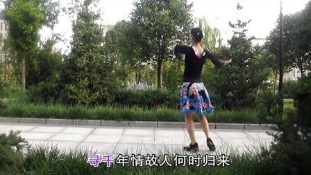 健身广场舞全集:梦里梅开