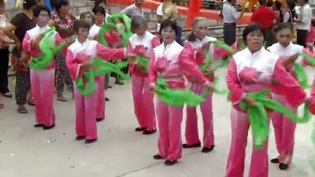 硳旧杨梅节-1