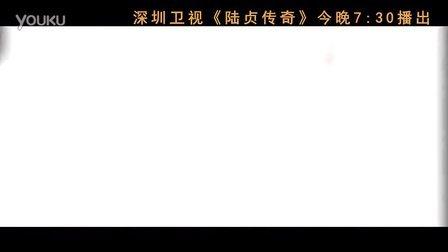 深圳卫视《陆贞传奇》-爱情版无广告