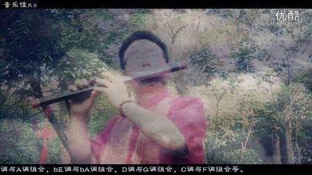 高原蓝 音乐佳F调双管黑檀木双管巴乌演奏 葫芦丝巴乌名曲欣赏