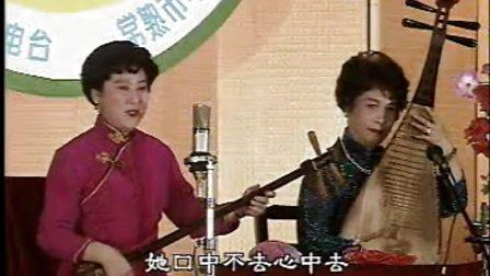 沈伟辰江文兰赵开生-佳期