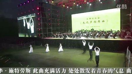 春之声圆舞曲(2012长城之声森林音乐节)