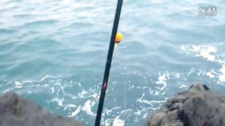 高手礁石现场讲解浮游矶钓如何伴饵料以及全游动钓组配置