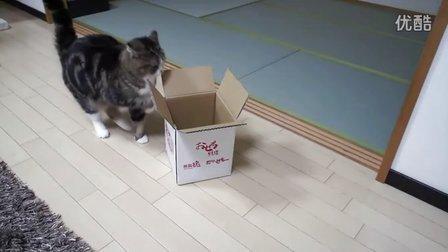 別以為是小箱子  我就進不去...