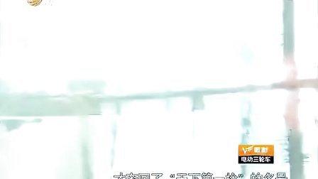 刘兰芳母子同台说岳飞  之高宠剪辑