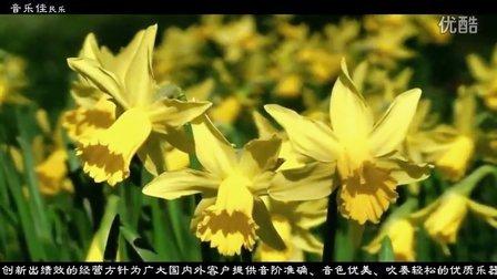 迎春 音乐佳bB调葫芦丝作品 葫芦丝名曲欣赏