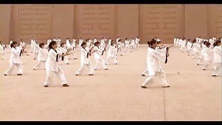 英莱特文化----《杨式太极拳》百人操练鉴赏一