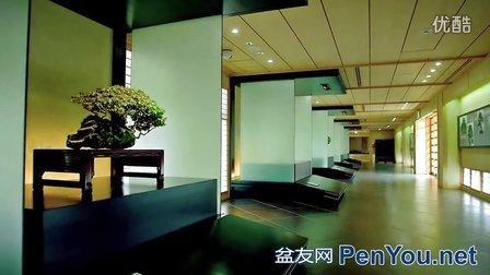大宫盆景美术博物馆