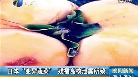 """日本""""基因变异蔬菜""""  福岛核泄露危害呈现-pradaxa视频"""
