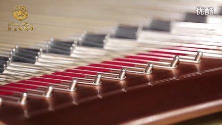 维也纳钢琴宣传片 自贡音乐佳琴行总经销