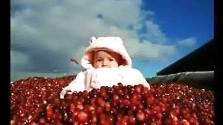 蔓越莓作用