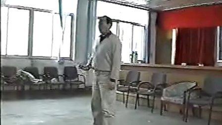 张志俊 陈氏太极拳新架一路驻马店内部培训班实况录像