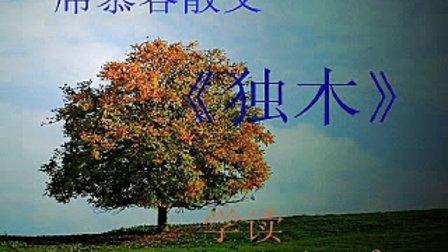 平安喜乐学读席慕容散文《独木》
