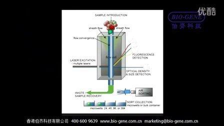 Union Biometrica-细胞团/蠕虫/胚胎(Cell cluster/Worm/Embryo)流式分选系统产品介绍 —伯齐科技