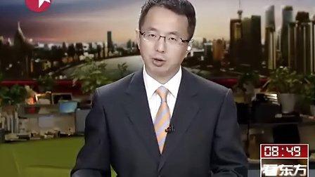 日本出云号-pradaxa
