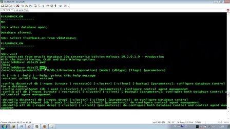 Oracle数据库配置archlog,flashback,em注意点及手动创建数据库过程