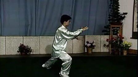 陳思坦 40式楊式太極拳背向