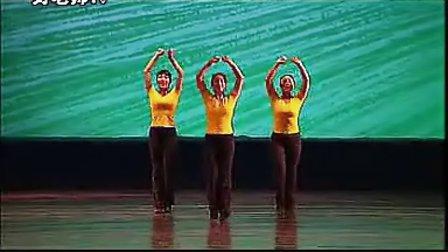《蝴蝶》4-6级中国舞蹈考级教材 标清