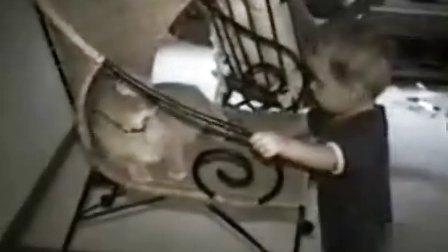 好奇也别惹猫!疯狂的组合拳~小孩哭了