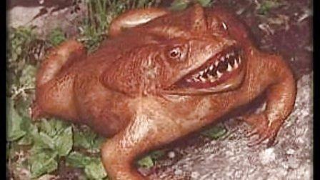 【恐怖生物】地球上你没见过的最恐怖真实的生物