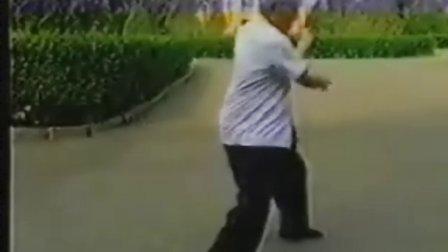 [洪传陈式太极拳一、二路及推手].洪均生