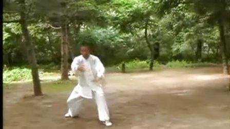 李雅軒傳一百一十八式太極長拳5