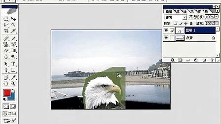 Fhotoshop从头学起视频Photoshop从头学起第21集