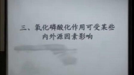 复旦大学上海医学院生物化学精品课程 33(免费)