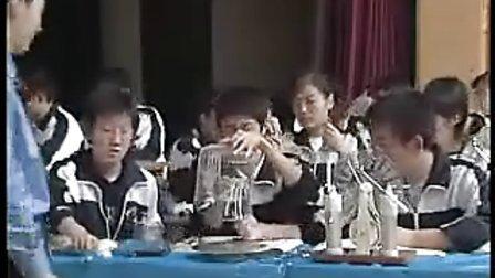《静电屏蔽》(2)-第七届物理青年教师教学技能大赛