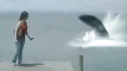 惊悚瞬间!女子海边遛狗拍照遭巨蟒袭击