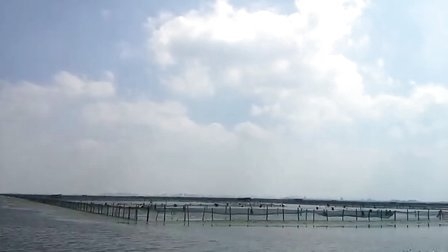 莲花岛在水一方蟹庄养殖基地