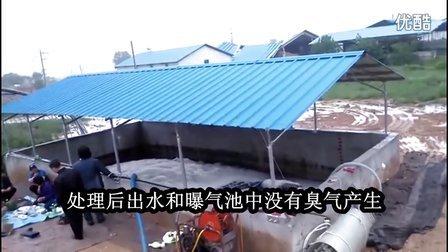 韩国生猪养殖场项目