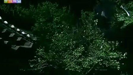全惠彬电视剧