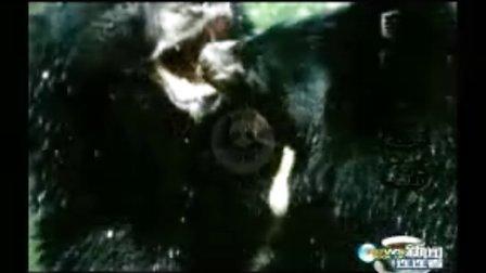 揭开山区袭羊神秘怪兽之谜(上)