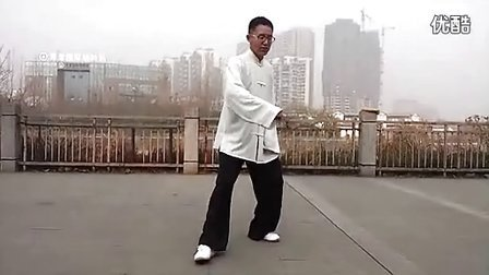 杨大卫讲解传统杨式太极拳85式---第6课白鹤亮翅_标清