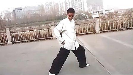 杨大卫讲解传统杨式太极拳85式---第7课搂膝拗步_标清