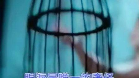 彭羚 囚鸟