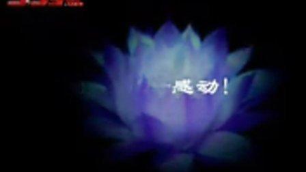 电影圣安娜奇迹DVD中英字幕08美国战争影片