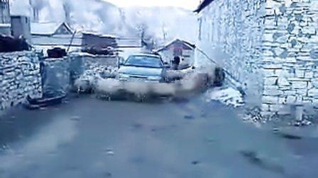 能把司机气疯的羊群www.guanzizai.com.cn