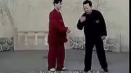 【凌风】 八极拳六大开