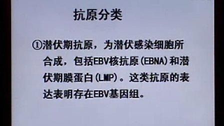 《临床微生物检验》第36讲-43讲-中国医科大学