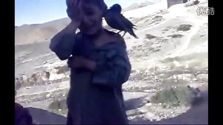 搞笑视频,奇趣,鸟 完全模仿小孩 哭笑