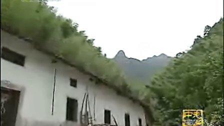 项英遇害迷雾重重 揭秘皖南事变