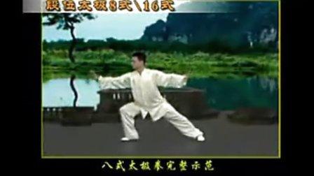 陳思坦8式16式太極拳