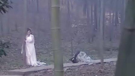 《神话剧》白蛇传30集全30