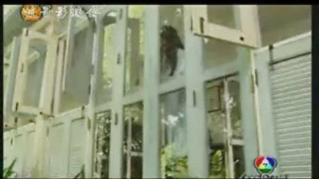 【RahutRissaya嫉妒的密码】MV之一搞笑版