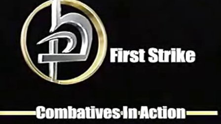以色列国技 Krav Maga 世界最强自卫术(1)First Strike