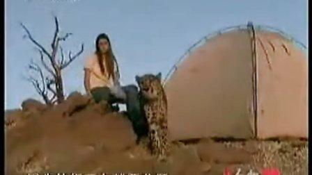 真人版美女与野兽 美女和猎豹生活17年