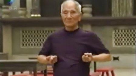 咏春拳_三套路_叶准演练