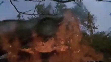 霹雳游侠片头(经典的回忆)